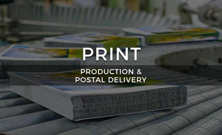 Print Services Vertical